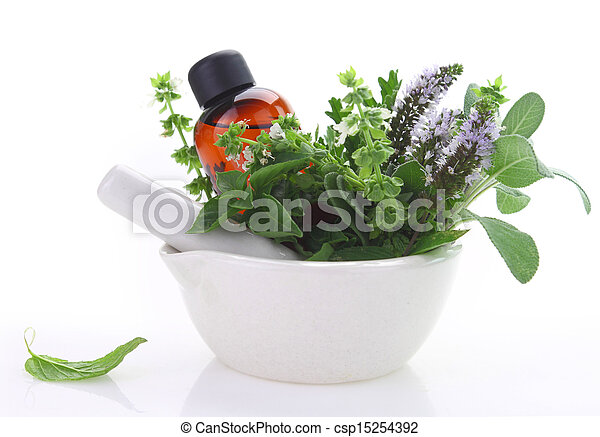 Mortar and pestle with fresh herbs and essential oil bottle - csp15254392