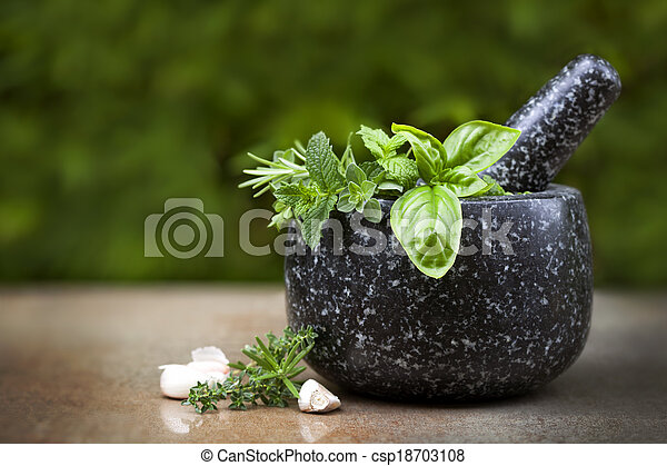 Mortar and Pestle with Fresh Herbs - csp18703108