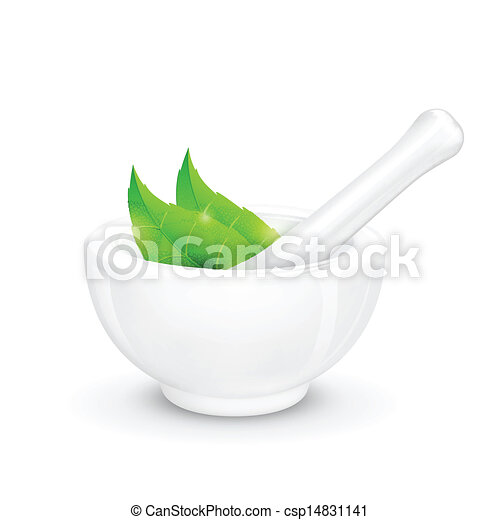 Mortar and Pestle with Herb - csp14831141