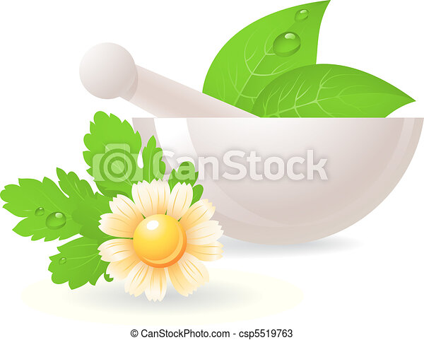 Mortar with herbs and camomile.  - csp5519763