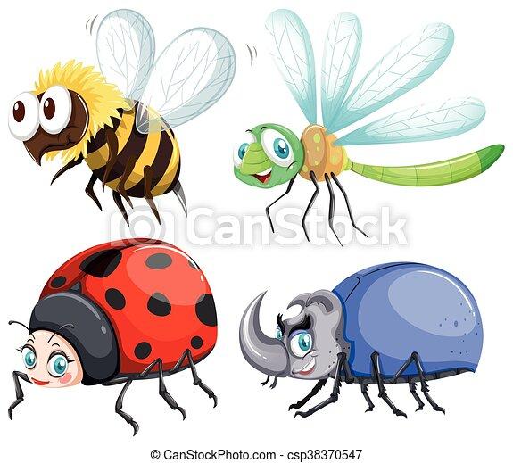 mosca, insectos, diferente, clase - csp38370547