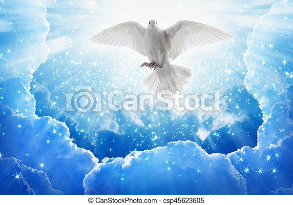 El espíritu santo vuela en los cielos, la luz brillante brilla desde el cielo - csp45623605