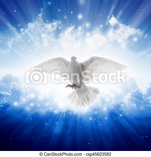 El espíritu santo vuela en los cielos, la luz brillante brilla desde el cielo - csp45623582