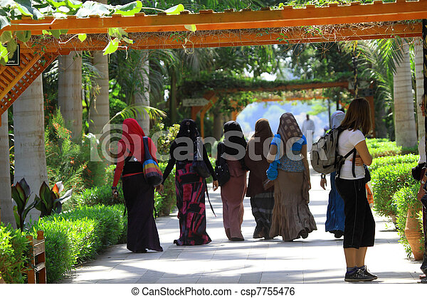 Moslem women - csp7755476