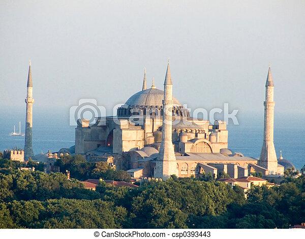 Mosque - csp0393443