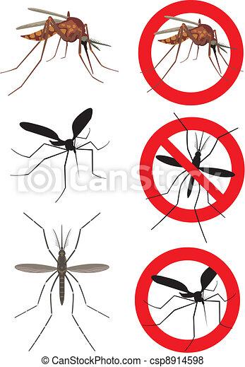 Mosquito, mosquitos - csp8914598