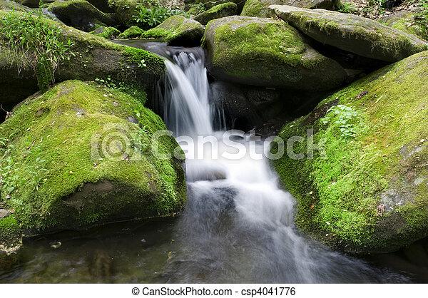 Mossy waterfall - csp4041776