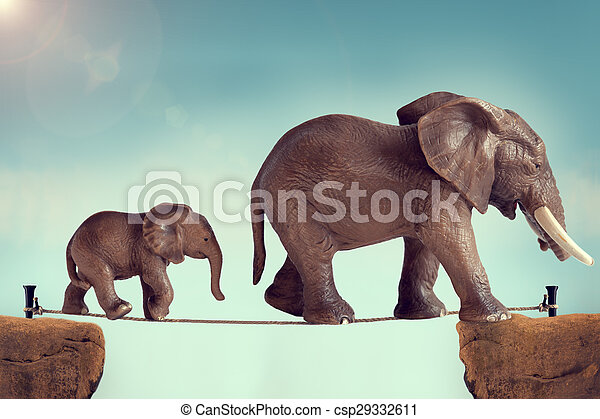 mother and baby elephant on a tightrope - csp29332611