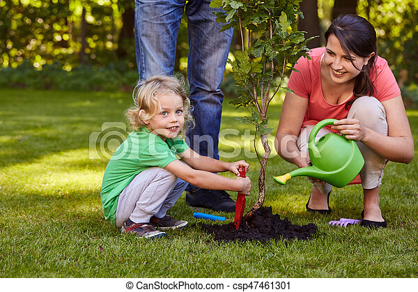 Mother watering a tree - csp47461301