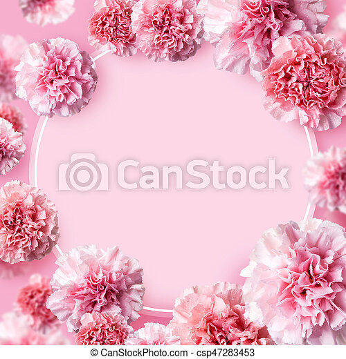Mother's day concept of pink carnation flowers background with copy space - csp47283453