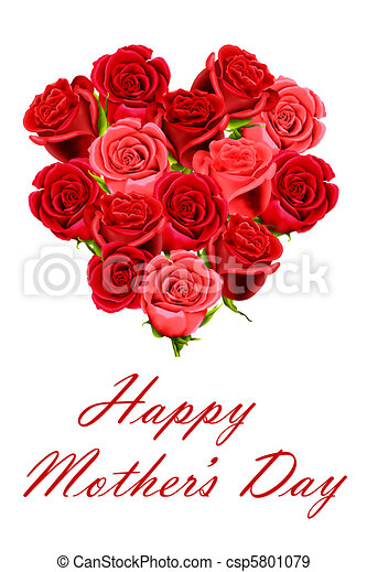 Mother's Day posy of roses - csp5801079