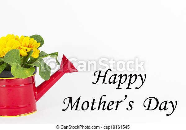 mother's day - csp19161545