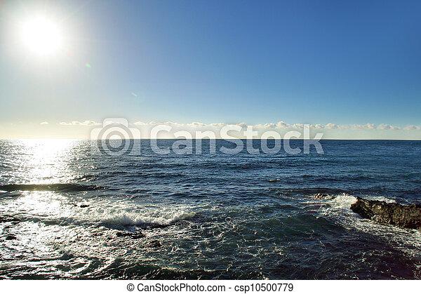motyw morski - csp10500779