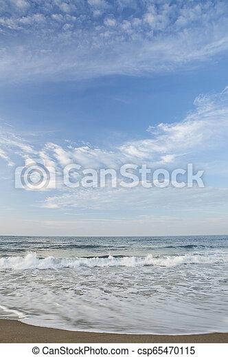 motyw morski - csp65470115