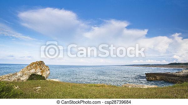 motyw morski - csp28739684