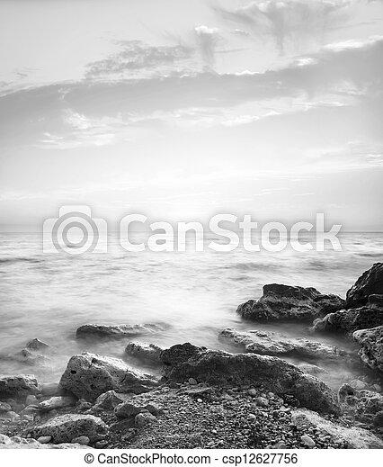 motyw morski - csp12627756
