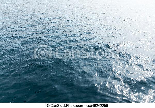 motyw morski - csp49242256