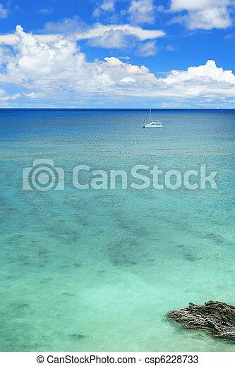 motyw morski - csp6228733