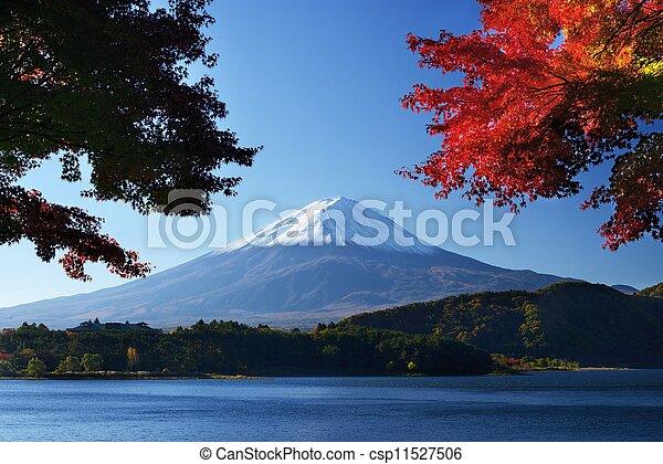 Mount Fuji - csp11527506