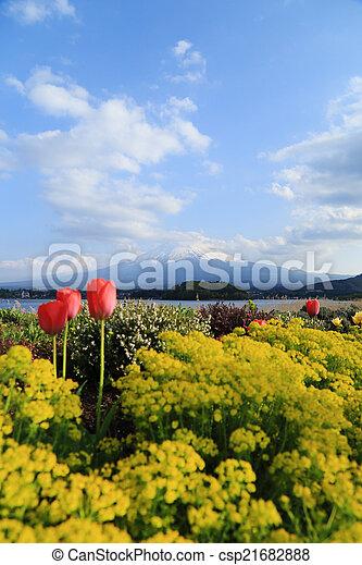 Mount Fuji, view from Lake Kawaguchiko - csp21682888