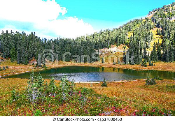 Mount Rainier, Washington - csp37808450