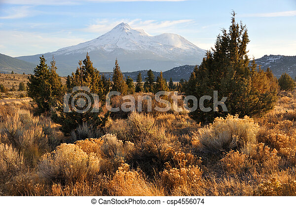 Mount Shasta in the Fall - csp4556074