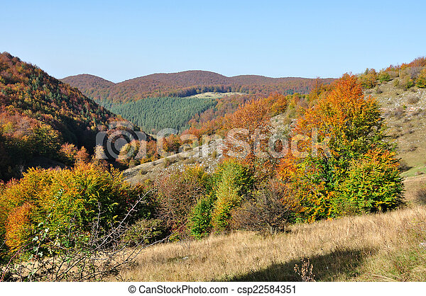 Mountain autumn landscape with colorful forest - csp22584351