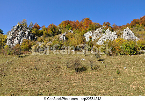 Mountain autumn landscape with colorful forest - csp22584342