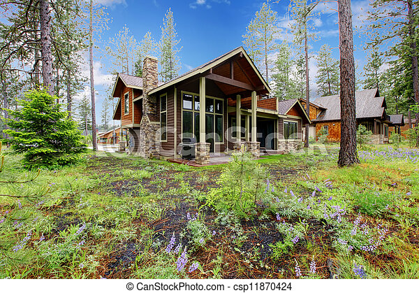 Mountain cabin home exterior with forest and flowers. - csp11870424