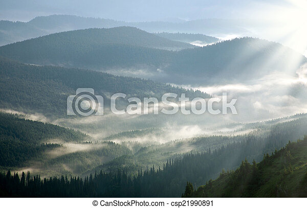 Mountain forest covered with mist, in the rays of dawn sun - csp21990891