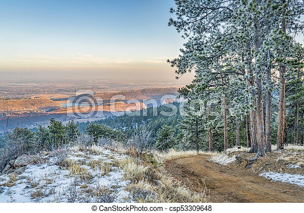 mountain forest road with pine trees covered by frost - csp53309648