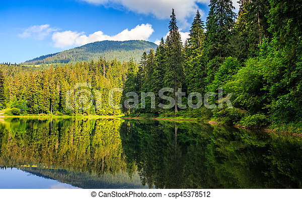 mountain lake among the forest - csp45378512