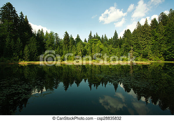 Mountain lake in spruce forest on a background of blue sky - csp28835832