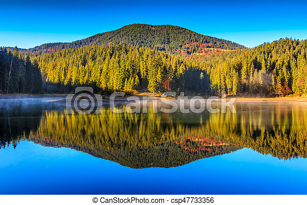 mountain lake on foggy morning in spruce forest - csp47733356