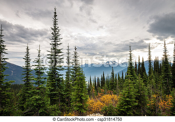 Mountain landscape in Canada - csp31814750