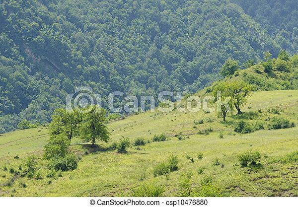 Mountain landscape in summer day - csp10476880