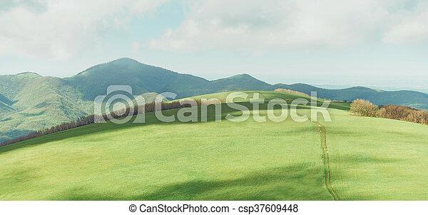 Mountain landscape in summer - csp37609448
