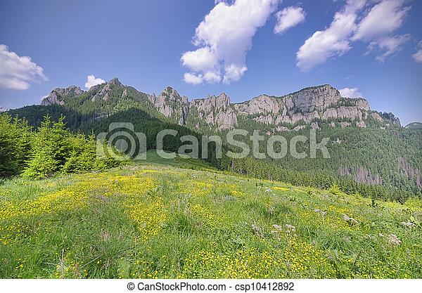mountain landscape in summer - csp10412892