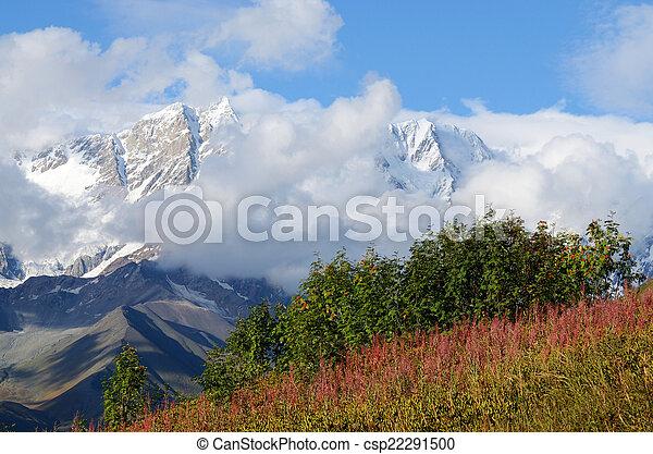 Mountain landscape in Upper Svaneti, zone of alpine meadows - csp22291500