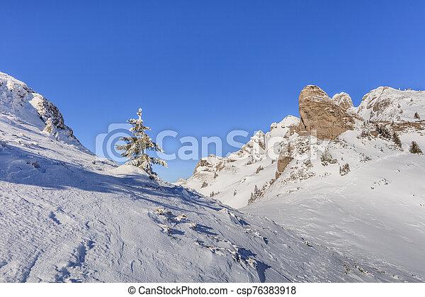 mountain landscape in winter - csp76383918