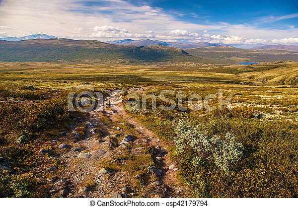 mountain landscape Norway national park Dovre - csp42179794