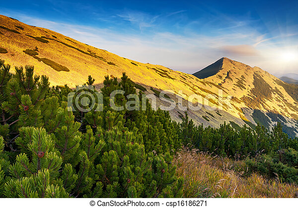 mountain landscape - csp16186271