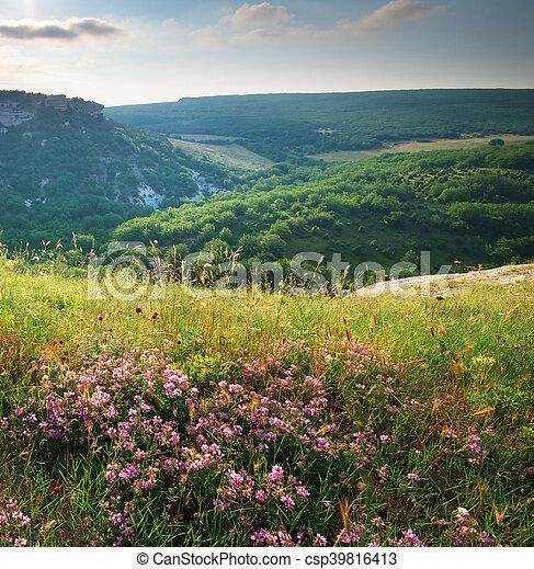Mountain landscape. - csp39816413