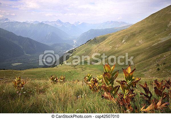 Mountain landscape - csp42507010