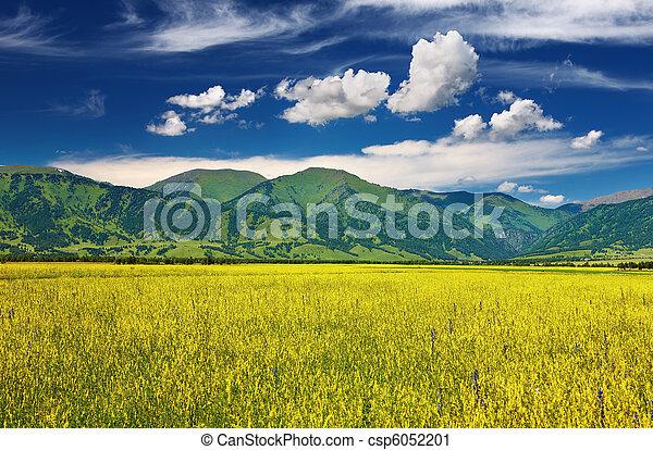 Mountain landscape - csp6052201