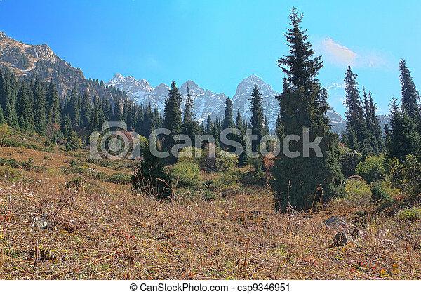 Mountain landscape - csp9346951