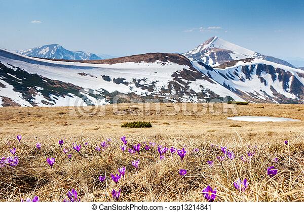 mountain landscape - csp13214841