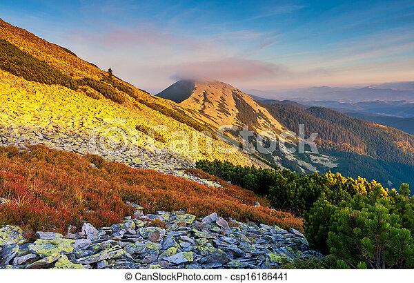mountain landscape - csp16186441