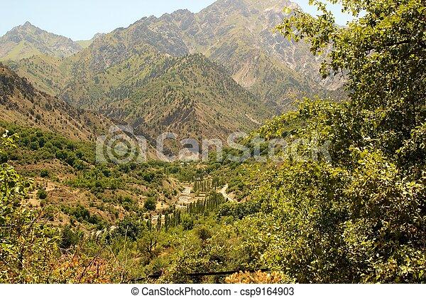 Mountain Landscape - csp9164903