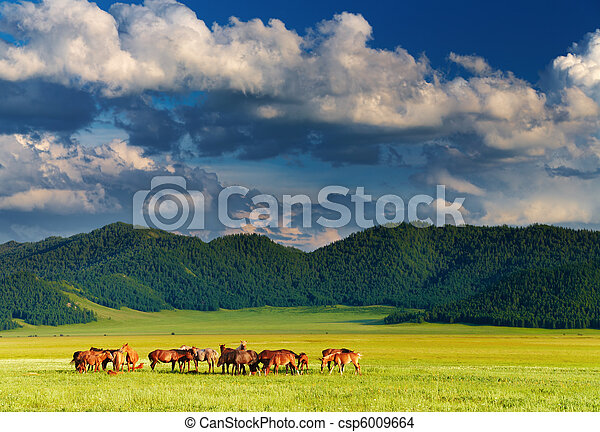 Mountain landscape with grazing horses at sunset - csp6009664